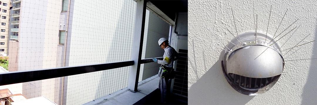 ハト対策事業 五代産業株式会社 兵庫県尼崎市